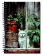 Village Cat Spiral Notebook