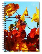 Vineyard 12 Spiral Notebook