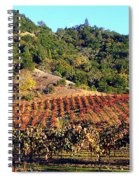 Vineyard 3 Spiral Notebook