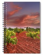 Vineyards At Sunset Spiral Notebook