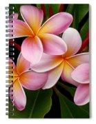 Wailua Sweet Love Spiral Notebook