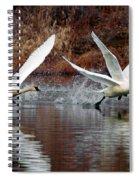 Walking On Water Spiral Notebook