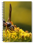 Wasp On Wildflower Spiral Notebook