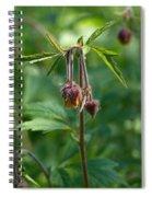 Water Avens Spiral Notebook