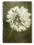 Water Drops On Dandelion Flower Spiral Notebook