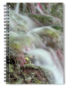 Water Spring Scene Spiral Notebook