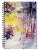 Watercolor 040908 Spiral Notebook