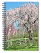 Weeping Cherry Tree Spiral Notebook