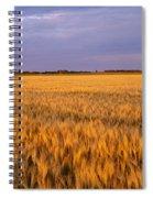 Wheat Crop In A Field, North Dakota, Usa Spiral Notebook