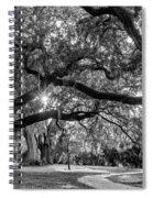 When I Dream... Spiral Notebook
