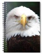 Where Eagles Dare 4 Spiral Notebook