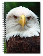 Where Eagles Dare Spiral Notebook