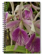 White And Purple Orchids Spiral Notebook