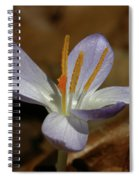 White Flower Spiral Notebook
