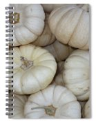 White Pumpkins Spiral Notebook