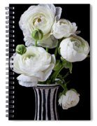 White Ranunculus In Black And White Vase Spiral Notebook