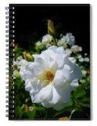 White Rose Spiral Notebook