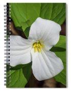 White Trillium 3 Spiral Notebook