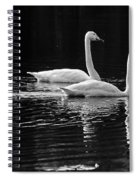 Whooper Swan Family Spiral Notebook