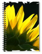 Wild Sunflower Spiral Notebook
