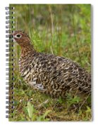 Willow Ptarmigan Spiral Notebook