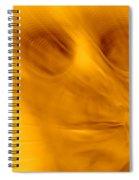 Window Pane Willie Spiral Notebook