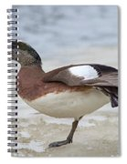 Wing Stretch.. Spiral Notebook