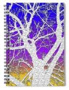 Winter Dusk Spiral Notebook