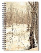 Winter Scene, Montgomery County, Pennsylvania Spiral Notebook