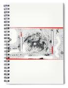 Winter Storm Street Lamp At Aberdeen South Dakota 1964-2009 Spiral Notebook