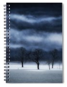 Winter's Passion Spiral Notebook