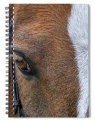 Wonder Pony Spiral Notebook