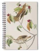 Wood Thrush Spiral Notebook