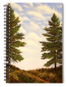Wooded Path Spiral Notebook