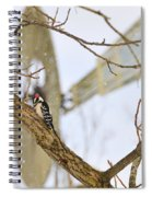 Woodpecker And Windmill Spiral Notebook