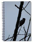 Woodpecker Spiral Notebook
