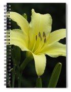 Yellow Bloom Spiral Notebook