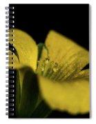 Yellow Clover Spiral Notebook