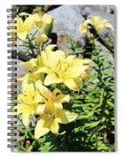 Yellow Day Lillies Spiral Notebook