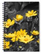 Yellow Lust Spiral Notebook