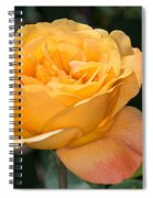 Yellow Rose Spiral Notebook