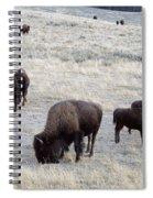 Yellowstone Bison Spiral Notebook