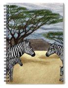 Zebra African Outback  Spiral Notebook