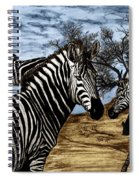 Zebra Outback  Spiral Notebook
