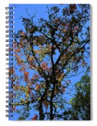 10-15-16--0776 Blue Sky # 2 Don't Drop The Crystal Ball Spiral Notebook