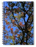 10-15-16--0777 Blue Sky # 3 Don't Drop The Crystal Ball Spiral Notebook
