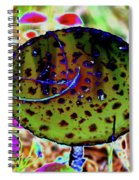 10-15-16--8400 # 2 Don't Drop The Crystal Ball Spiral Notebook
