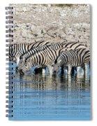 Etosha - Namibia Spiral Notebook