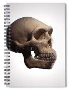 Homo Erectus Spiral Notebook