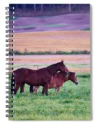 Horses Of The Fall Spiral Notebook